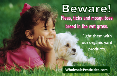 bewarefleasticksmosquitoes